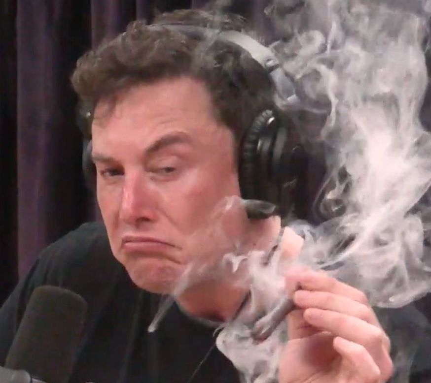 Elon Musk The High Stakes Gambler Of Technological Capitalism Books Ideas